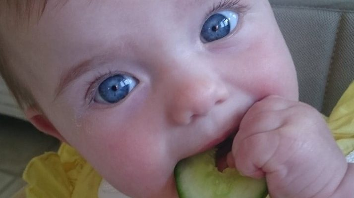 Baby food ~ first finger foods